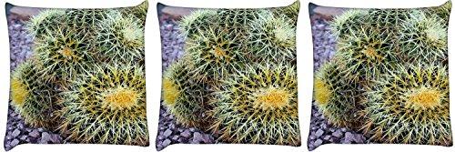 Snoogg 3er Pack Fass-Kaktus digital bedruckte Kissenbezug Kissen 12 x 12-Zoll-